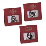 Ladies' handkerchief Animal collection - 1 pc/box